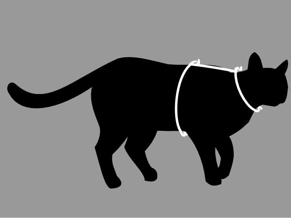 Size Chart Petoodles Cat Harnesses